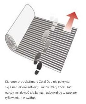 kierunek maty Coral Duo